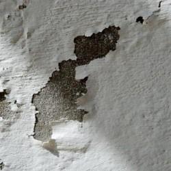 C mo pintar una pared con humedad pinturas lepanto - Pintar paredes con humedad ...